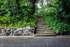 Scale di pietra naturali in giardino Immagini Stock