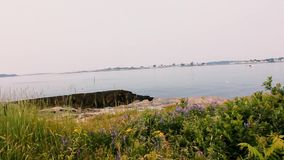 Scale giganti a Harpswell Maine archivi video