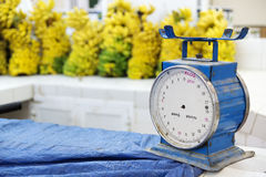 Scale market oman royalty free stock images