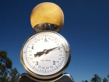 Scale with melon. Scale in outdoors environment weighing yellow melon Royalty Free Stock Images