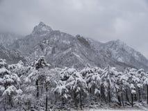 Scale nelle montagne Fotografia Stock Libera da Diritti