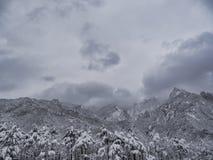 Scale nelle montagne Fotografia Stock