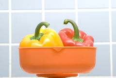 Scale And Pepper. On Closeup Royalty Free Stock Photos