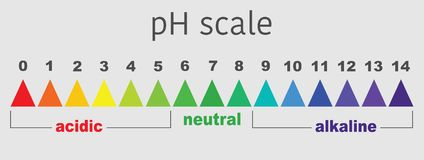 Scale of ph value for acid and alkaline solutions,. Scale of ph value for acid and alkaline solutions, infographic acid-base balance. scale for chemical Royalty Free Stock Photography