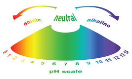 Scale of ph value for acid and alkaline solutions Royalty Free Stock Photo