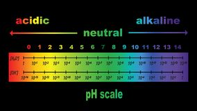 Scale of ph value for acid and alkaline solutions. PH scale value , ph paper test ,  illustration Royalty Free Stock Photos