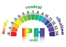 Scale of ph value for acid and alkaline solutions,. Infographic acid-base balance. scale for chemical analysis acid base.  illustration isolated  or white Stock Photo