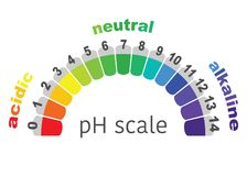 Scale of ph value for acid and alkaline solutions, or white background. Scale of ph value for acid and alkaline solutions, infographic acid-base balance. scale stock illustration