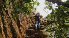 Scale rampicanti dell'uomo turistico nella roccia Bella natura Giungla vietnamita vicino alle cadute dell'elefante archivi video