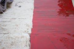 Scale rosse lunghe Immagini Stock