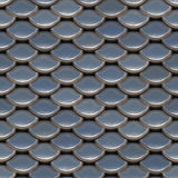 Scale. Seamless fish scale background close up Royalty Free Stock Images
