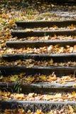 Scale a tempo di autunno fotografia stock