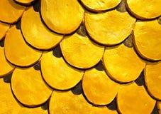 scale yellow dragon Stock Photos