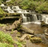 Scalebar Force, inthe ravine. Stock Images