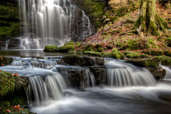 Scaleber Force falls. The stunning Scaleber Force falls near Settle in the Yorkshire Dales National Park in all of their autumnal splendor Stock Images