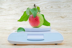 Scales Stock Photography