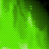 Scales pattern in green shades Stock Images