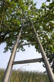 Scaletta di legno Immagine Stock Libera da Diritti