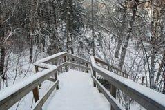 Scalette coperte di neve Fotografie Stock Libere da Diritti