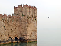 Scaligers castle, Sirmione Stock Photo