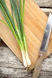 Scallions Stock Images