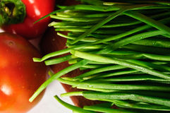 Scallions pepper and tomato. Fresh salad ingredients on dinner table Stock Photos