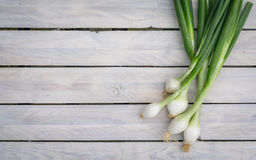 Scallions on a wooden table Stock Image