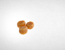 scallop or dried scallop on a background. Stock Photography
