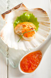 Scallop with eggs salmon Stock Image