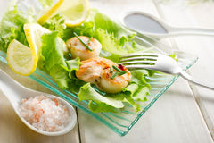 Scallop with green salad Royalty Free Stock Photography