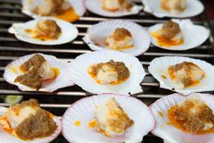 Scallop grilled with butter sauce Royalty Free Stock Photography