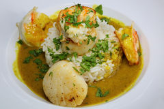 Scallop & Prawn Curry Royalty Free Stock Photos
