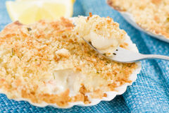 Scallop & Prawn Gratin Royalty Free Stock Image