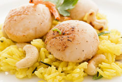Scallop with Rice Stock Photos