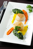 Scallop seafood appetizer Stock Photo