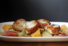 Scallop seafood Stock Photography