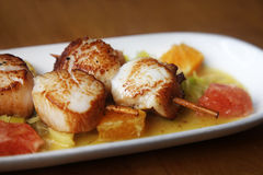 Scallop seafood Stock Images