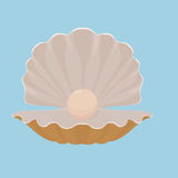 Scallop seashell with pearl illustration Stock Photos