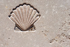 Scallop Seashell  - Symbol of Pilgrimage. Marble background with engraved scallop seashell, symbol of pilgrimage, Santiago de Compostela Stock Photos