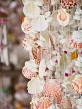 Scallop shell mobile Stock Photos