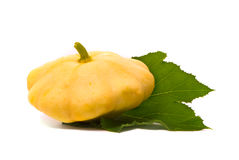 Scallop squash and green leaf Stock Images
