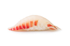 Scallop sushi Stock Image