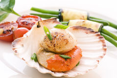 Scallop with Vegetable Stock Image