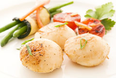 Scallop with Vegetable Stock Photography