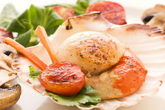 Scallop with Vegetable Royalty Free Stock Photos