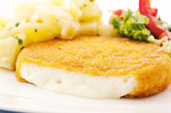 Scalloped Camembert. With salad and potato Stock Image