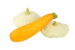 Scalloped custard and marrow squash (Cucurbita pepo var. patisson) Royalty Free Stock Photography