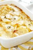 Scalloped potatoes Royalty Free Stock Photography