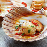 Scallops. In the shell, cooked with chili.  Delicious Stock Image