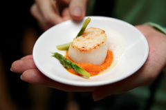 Scallops with asparagus Stock Photography